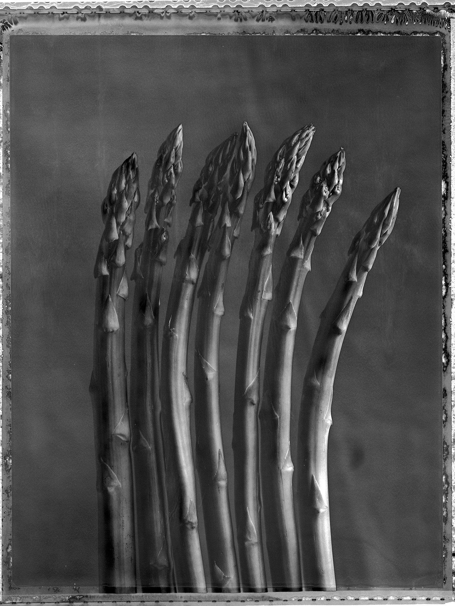 Asparagus2020-2